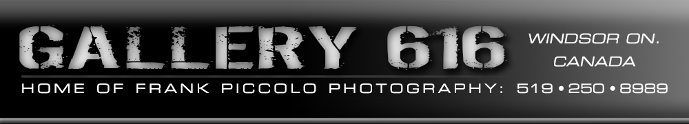 Home of Frank Piccolo Photography